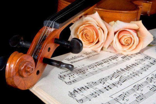 Roses violin